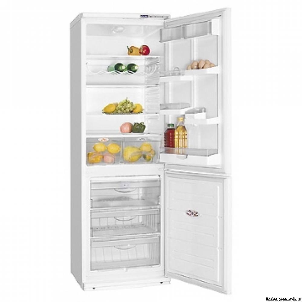 двери холодильника атлант 1704 1: